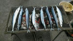 期待感たっぷりの秋刀魚